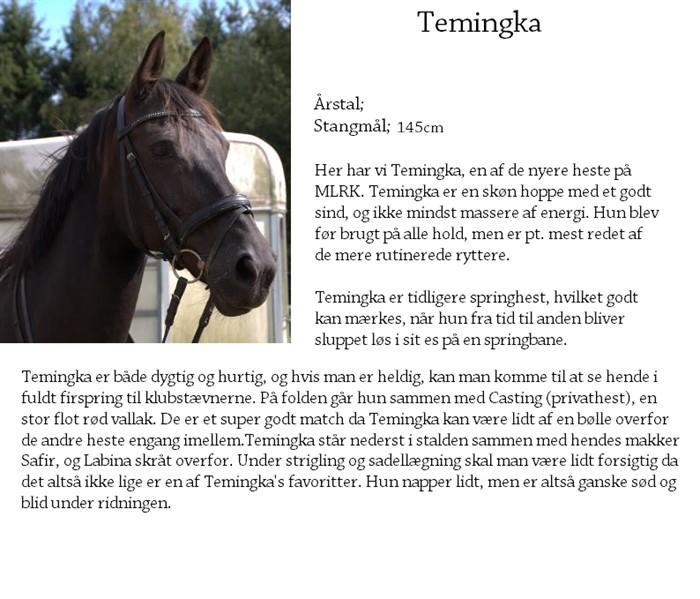 energi til hest